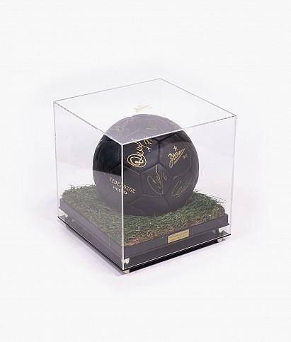 Мяч с автографами «Золотой газон»